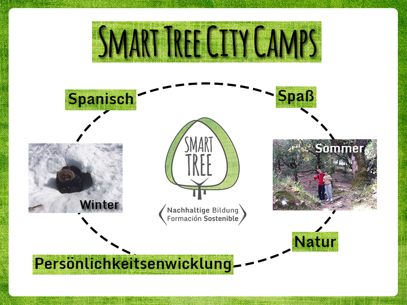 Smart Tree City Camp